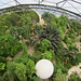 View of the tropical dome from above.