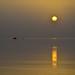 GREY SUNRISE      (no psp)