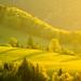 Sun-Kissed ~ Slovakia