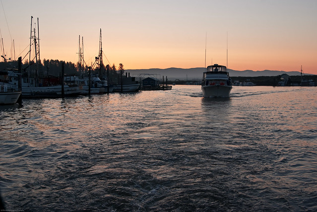 Dawn fishing ilwaco washington june 2011 actually at for Ilwaco wa fishing charters