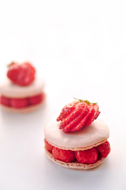 strawberry macaron | Flickr - Photo Sharing!