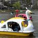 Ueno Park boating lake 04