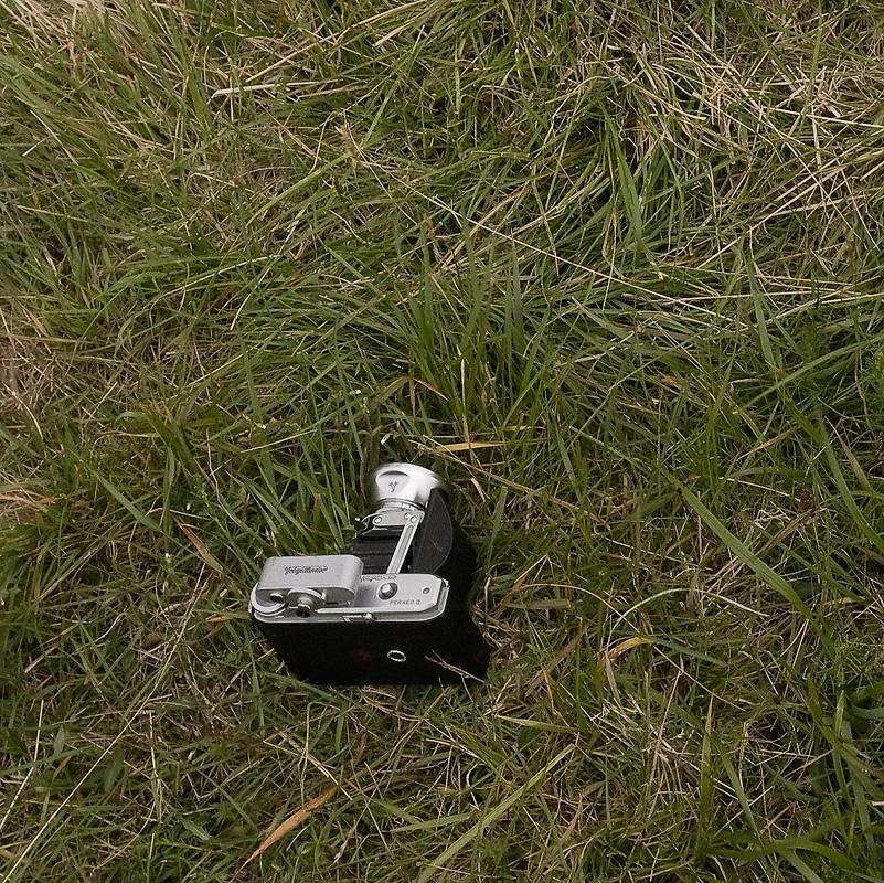 A Voiglander Perkeo II, a fifties folding bellows camera, laying in grass