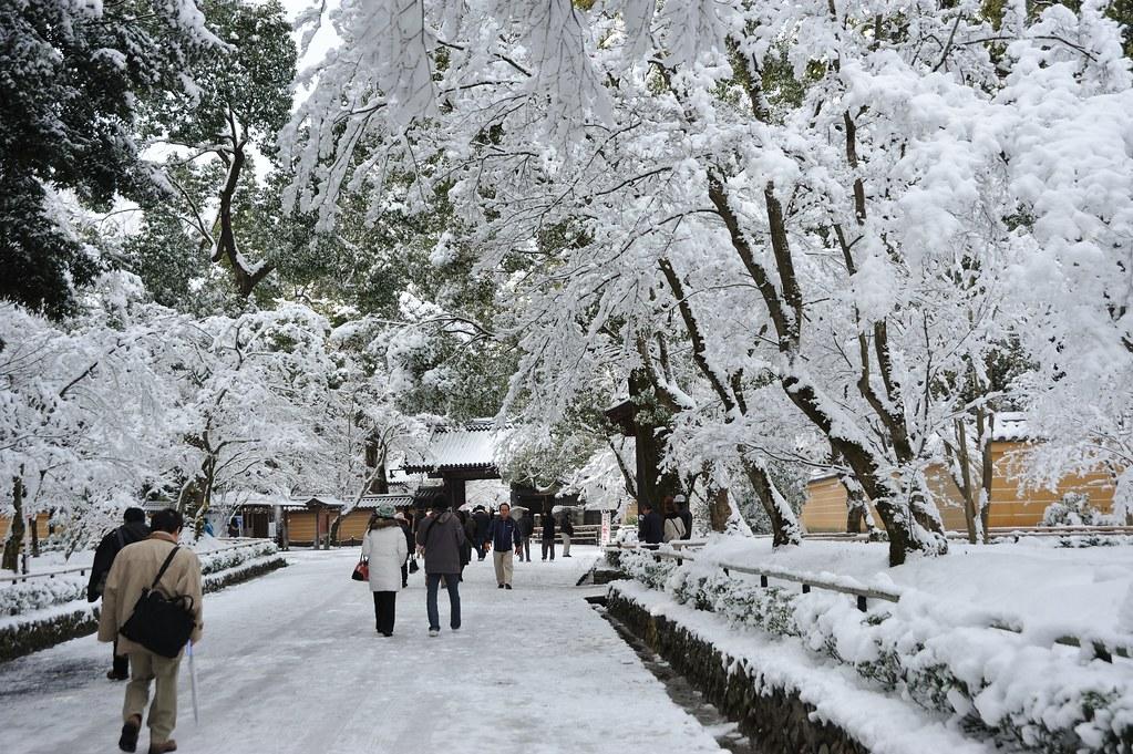kinkakuji temple in snow 2011 1 1 takeshi. Black Bedroom Furniture Sets. Home Design Ideas