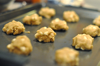 Unbaked Cookies | by Kristi @ TCRB