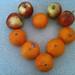 325/365 Fruit