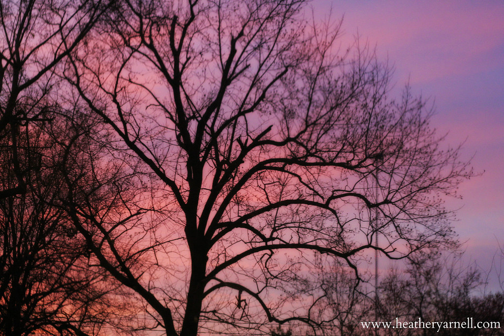 Pastel Missouri Sunset
