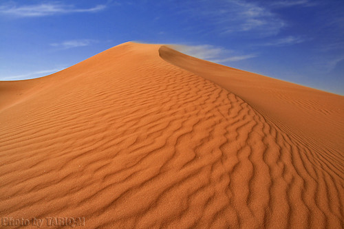 Blowing Sand - Explore Front Page | by TARIQ-M