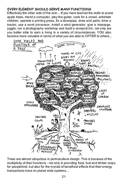 Sample page from Permaculture: A Beginners Guide