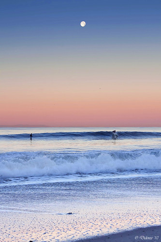 Moonlight Surfer | by Didenze