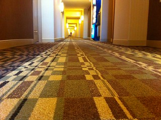 Standard issue migraine-inducing hotel carpet | by Meg Pickard