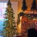 Woodland tree before adding decorations