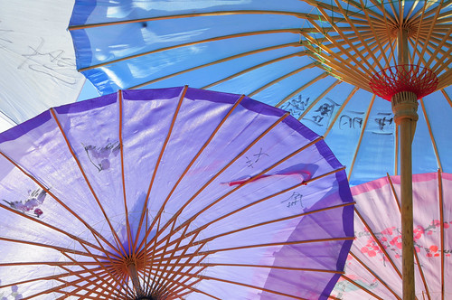 Chinese Parasol Details | by Express Monorail