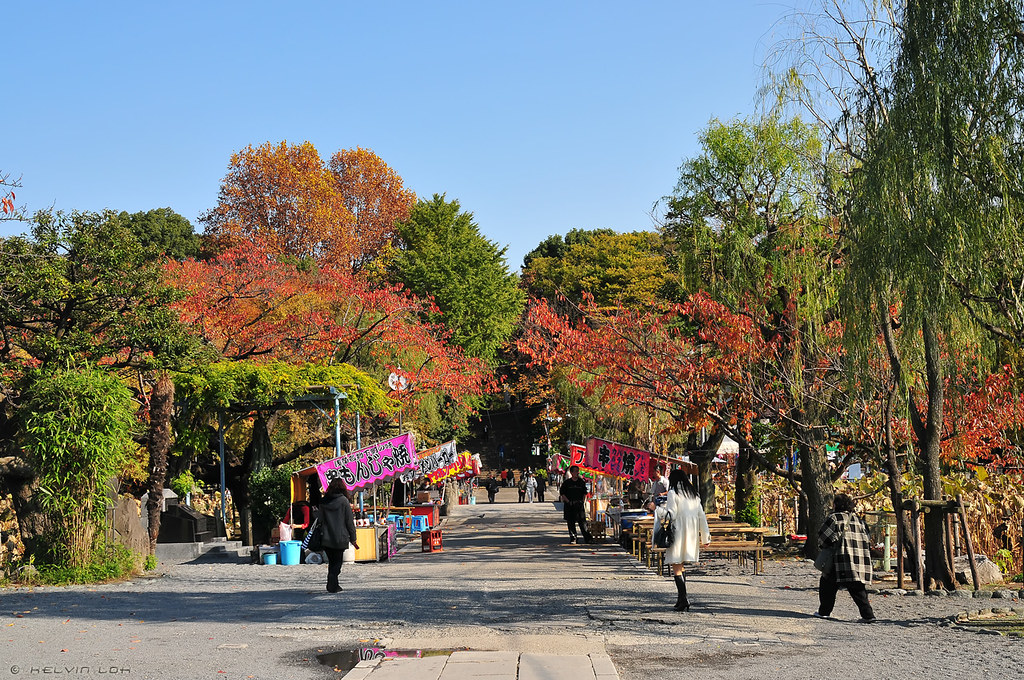 Ueno Park Autumn Autumn in Ueno Park | by