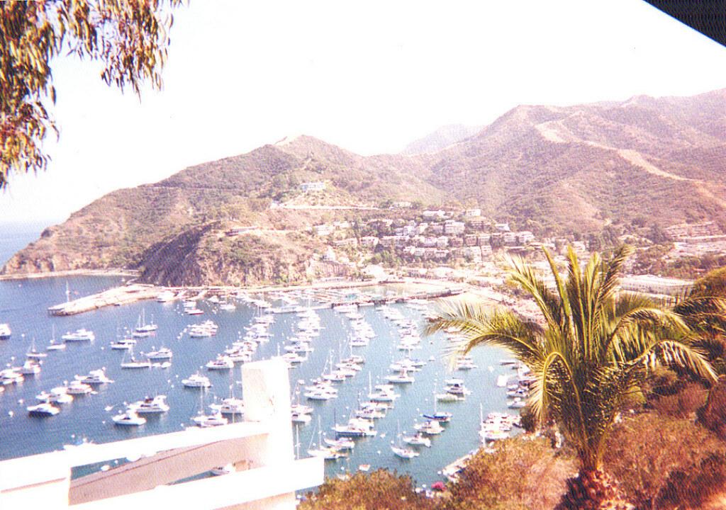 Catalina Island New Years