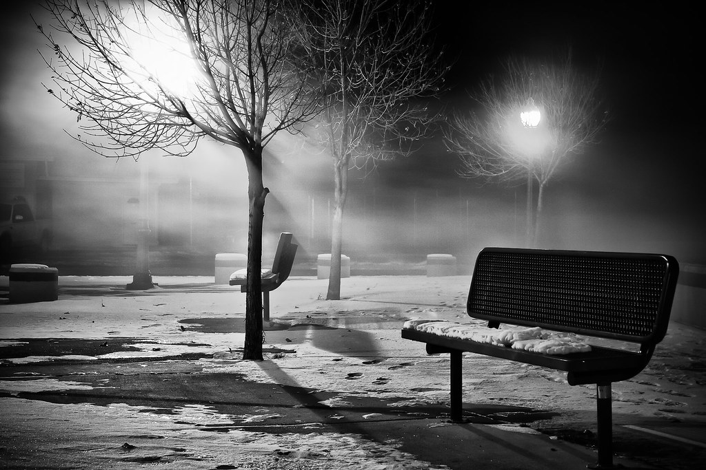 Winter Park Bench Black White Explored Eight Degre Flickr