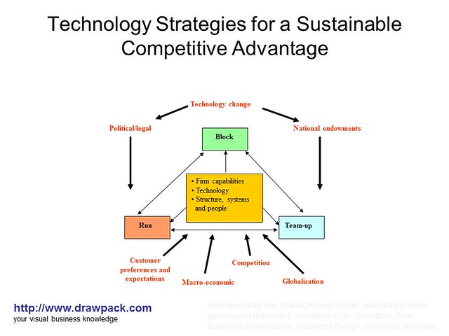 Technology Strategies for a Sustainable Competitive ...