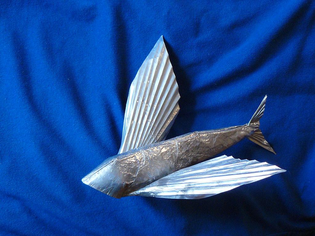 flying fish by cacodaemonia - photo #20