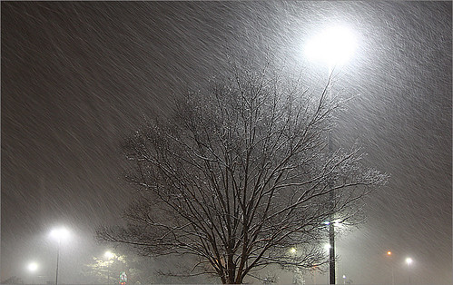 snow | by Bahman Farzad