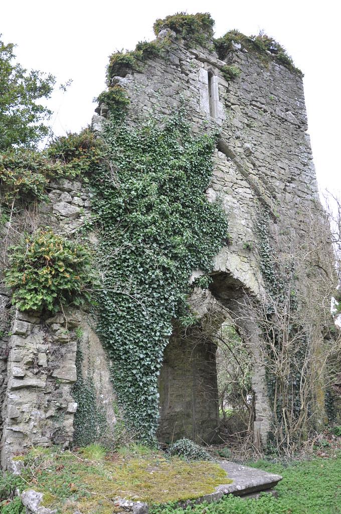 bord failte cork ~ castlelyons abbey, saint marys  the abbey at castlelyons