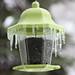 Icy feeder