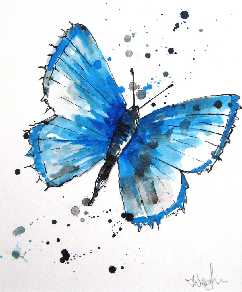 Butterfly Blue A Bright Lively Depiction Of