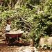 Agua Fría Preschool and Primary School