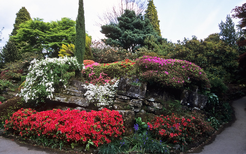 Famous Rock Garden At Leonardslee Gardens West Sussex En
