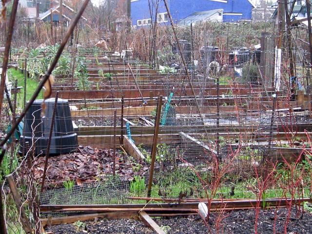 Community Garden In Winter Flickr Photo Sharing