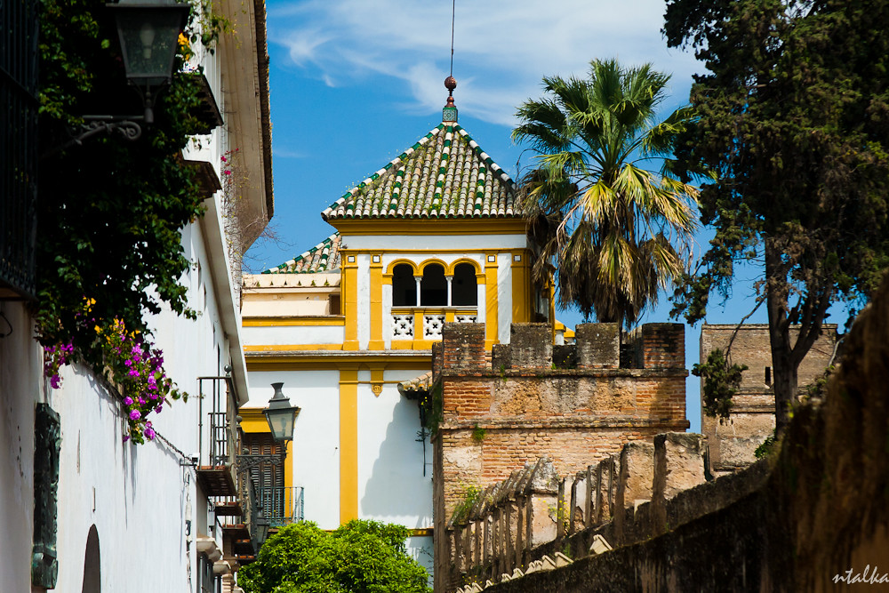a look at the ancient hispalis city of seville the spanish sevilla Apartments in seville seville, called also hispalis or ishbiliya, is the capital city of andalusia it is an intoxicating combination of ancient history, modern .