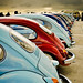 Colourful VW Beetles rear