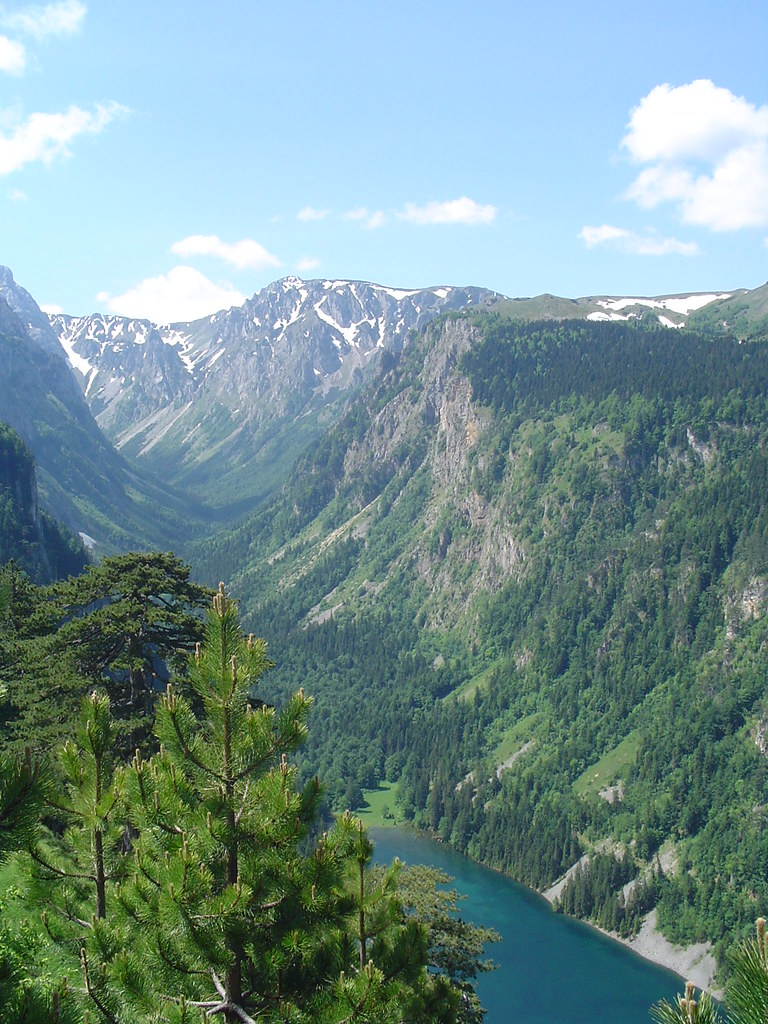 Tara River Canyon Montenegro Learn More About Water