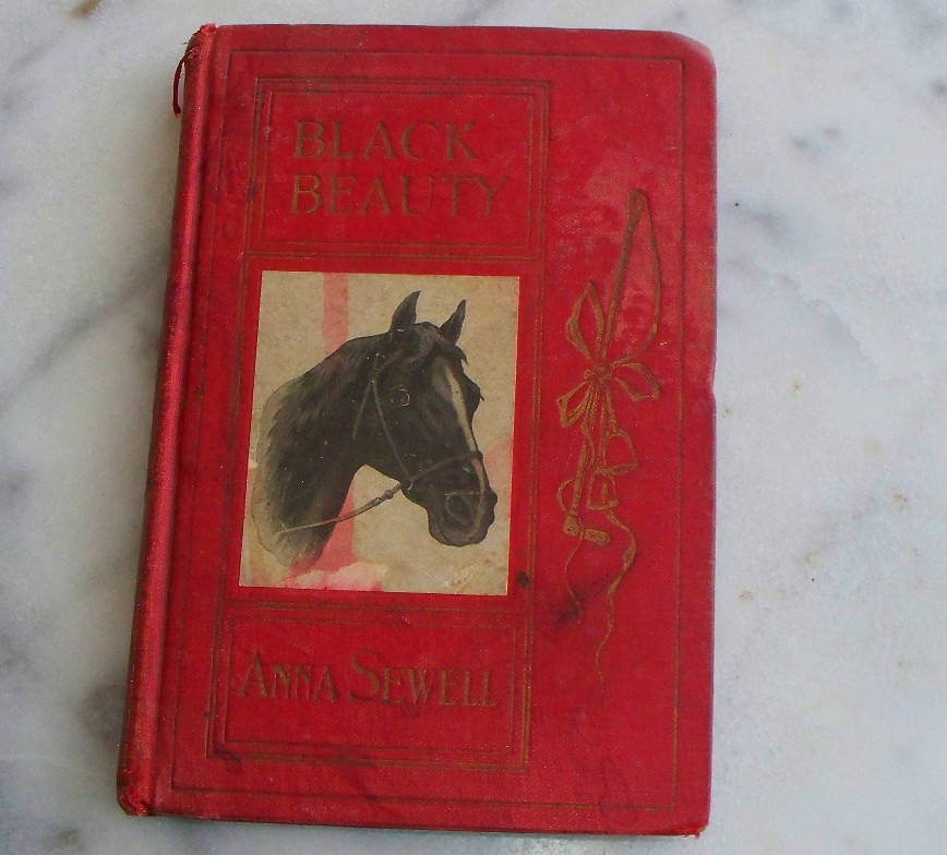 black beauty anna sewell essay Anna sewell: anna sewell british author of the children's classic black beauty sewell's concern for the humane treatment of after reading an essay on.