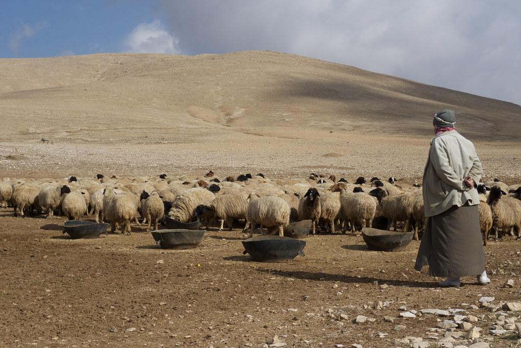 中東與北非地區的環境問題,影響資源分配甚鉅,經常是衝突形成的原因之一。(圖片來源:Joel Bombardier/Flickr)。