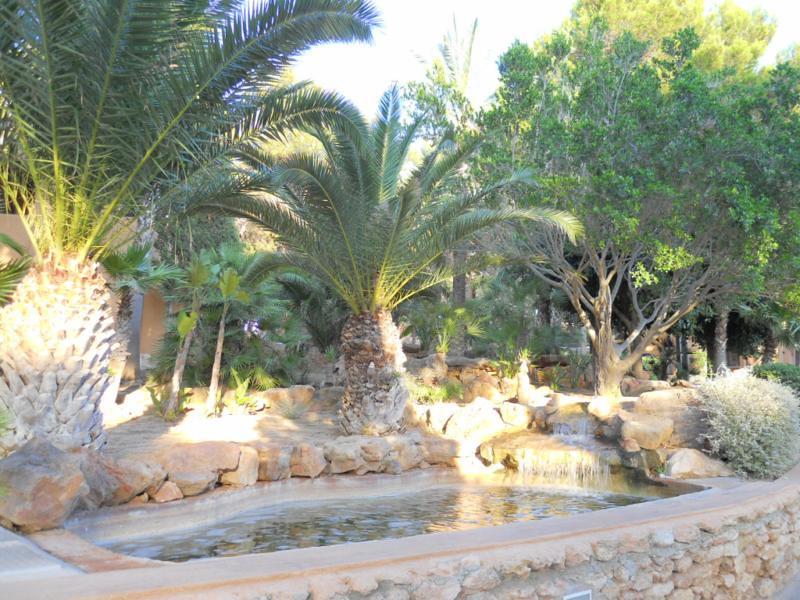 Jard n acu tico con estanque de obra jardin acu tico con for Jardin acuatico