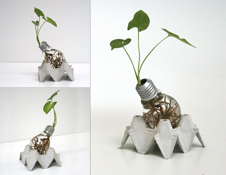 Bombillo maceta adorno bombillo foco vidrio planta - Manualidades faciles reciclaje ...