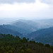 JEKA Photography: The Ouachita Mountains and National Forrest