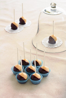 Boston Cream Pie Cake Pops... | by Xiaolu // 6 Bittersweets