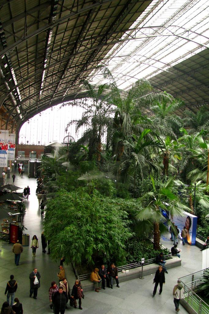 Jardin tropical de atocha 5 madrid jard n tropical de l flickr - Jardin tropical atocha ...