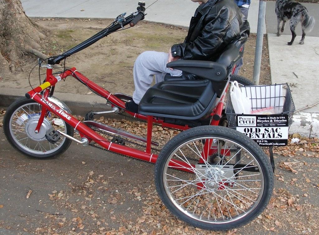 Worksman Team Dual Trike Side Side By Side Semi