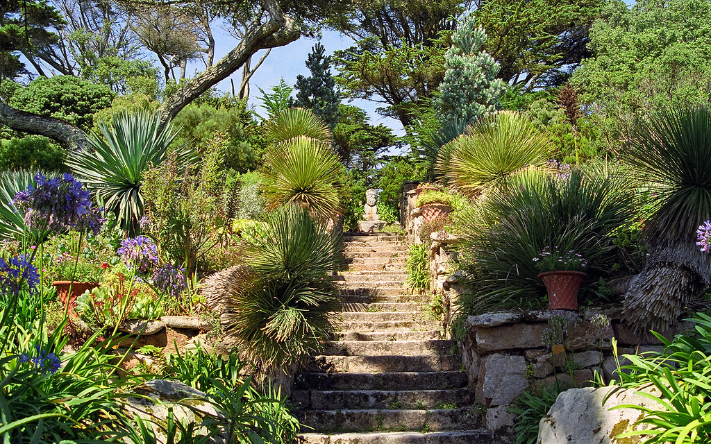 Tresco abbey gardens scilly isles uk view of neptune s for Garden trees england