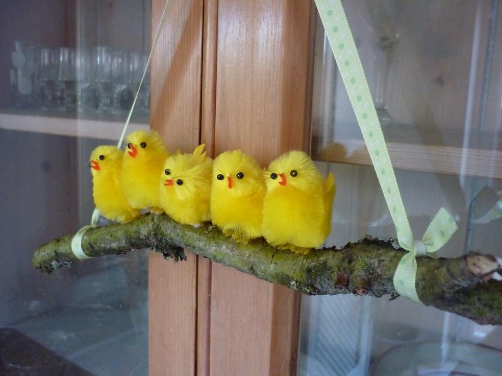 Easter chickies flickr - Deco de table de paques ...