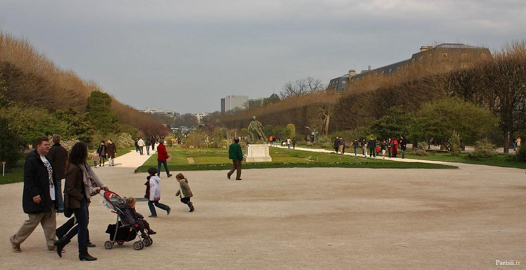 La grande allée du Jardin des Plantes, avec la statue de Buffon, grand réformateur du jardin