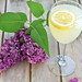 Lemonade+Wine
