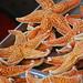 Beijing_2011 05 20_074