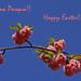 Ringrazio e contraccambio i vostri auguri di una Pasqua felice e in pace, anche a nome di Ferro e di Pietro!
