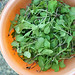 radishes_bowl