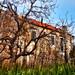 Abandoned village house