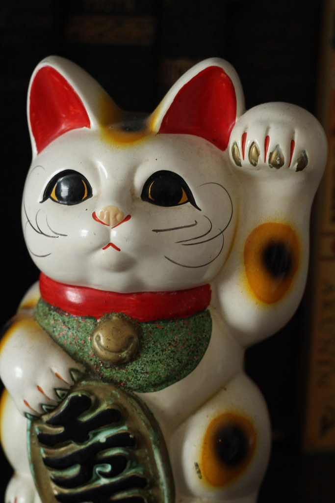 The Lucky Cat Rescue Weehawken Nj