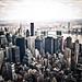 high, higher, highest - new york city